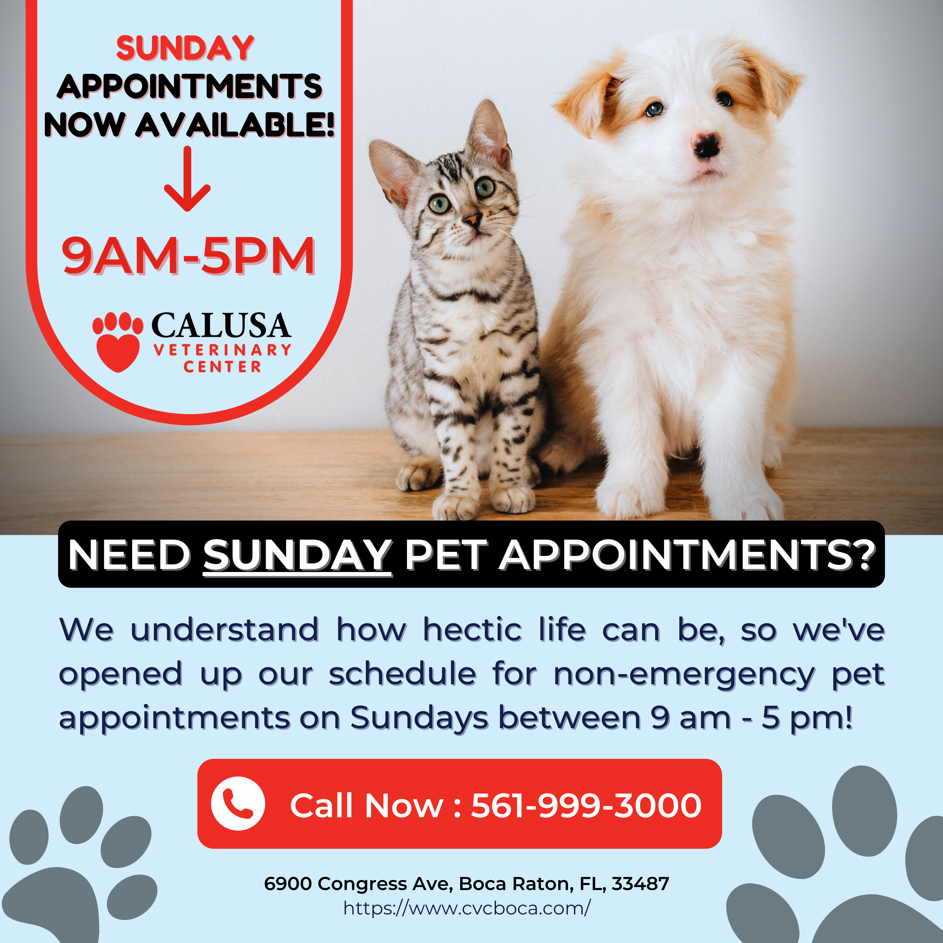 Calusa Sunday Appointments